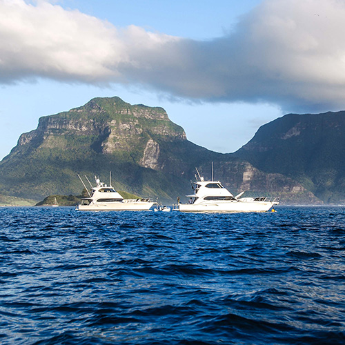 Two families adventure to magical Lord Howe Island - 350 miles off Australia's east coast