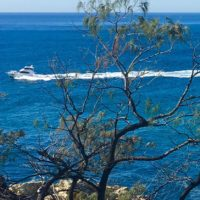 The start of the R Marine Crawley fleet passing Point Lookout on Queensland's Gold Coast
