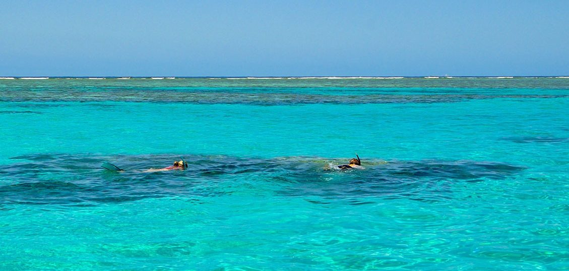 Snorkelling in the clear water of Lady Musgrave atoll.