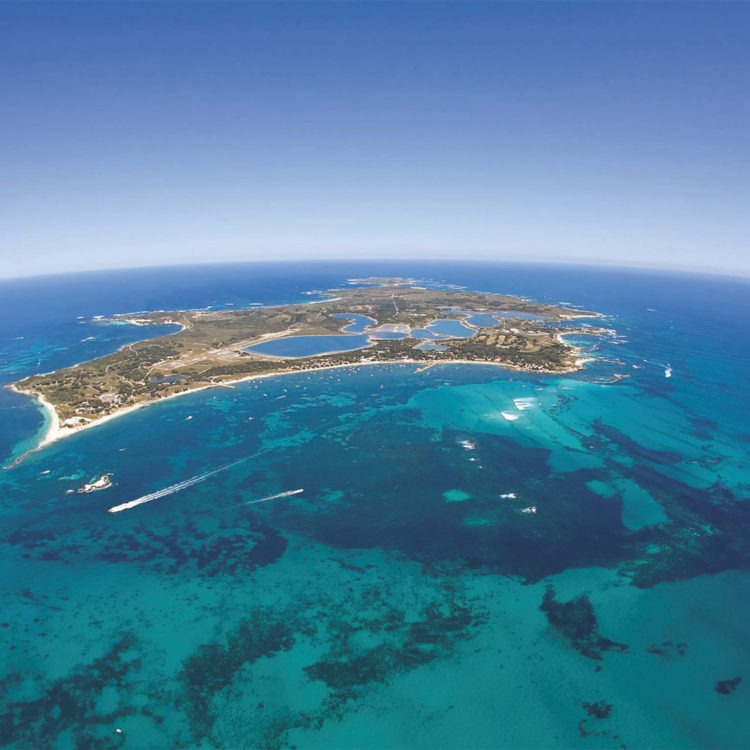 'Riviera Assist' supports owners at Rottnest Island over the festive season